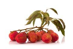 Свежие lychees изолированные на белой предпосылке Стоковое фото RF
