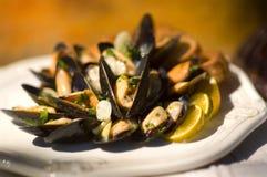 свежие mussells суккулентные Стоковое Изображение RF
