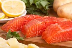 Свежие Salmon части стоковые фотографии rf
