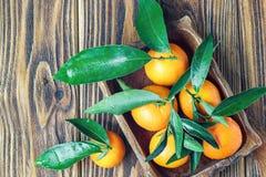 Свежие tangerines в деревенской деревянной плите, взгляд сверху Стоковое фото RF