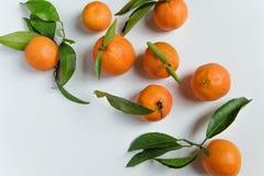 Свежие tangerines на белой предпосылке с космосом для текста Стоковые Фотографии RF