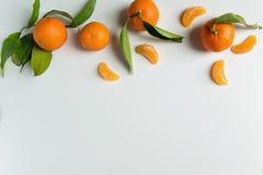 Свежие tangerines на белой предпосылке с космосом для текста Стоковые Изображения