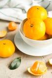 Свежие tangerines на таблице Стоковые Изображения RF