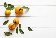 Свежие tangerines с листьями на белом деревянном космосе экземпляра предпосылки для взгляд сверху продукта или текста Стоковая Фотография RF