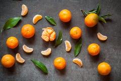 Свежие Tangerines с листьями Стоковые Изображения RF
