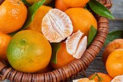 Свежие Tangerines с листьями Стоковые Фото