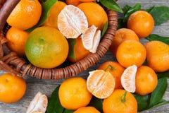 Свежие Tangerines с листьями Стоковое фото RF