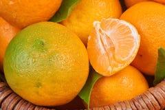 Свежие Tangerines с листьями Стоковое Изображение