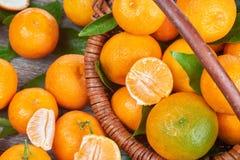 Свежие Tangerines с листьями Стоковая Фотография