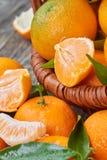 Свежие Tangerines с листьями Стоковые Фотографии RF