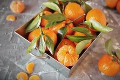 Свежие tangerines с листьями в стальной корзине на сером камне Стоковые Фото