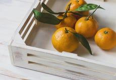Свежие tangerines с листьями на белой деревянной коробке Стоковые Изображения RF
