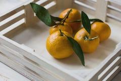 Свежие tangerines с листьями на белой деревянной предпосылке Стоковая Фотография RF
