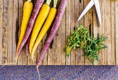 Свежие Tri моркови цвета с отрезанными травами готовыми для жарить в духовке стоковое изображение rf