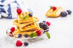 Свежие waffles с муравьем порошка сахара ягод сиропа шоколада чеканят Стоковые Изображения
