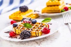 Свежие waffles с муравьем порошка сахара ягод сиропа шоколада чеканят Стоковые Фото