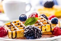 Свежие waffles с муравьем порошка сахара ягод сиропа шоколада чеканят Стоковые Фотографии RF
