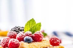 Свежие waffles с муравьем порошка сахара ягод сиропа шоколада чеканят Стоковое Изображение RF