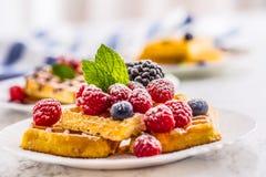 Свежие waffles с ягодами засахаривают листья мяты муравья порошка Стоковое Фото