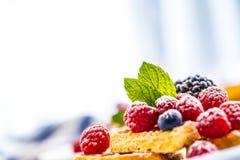 Свежие waffles с ягодами засахаривают листья мяты муравья порошка Стоковая Фотография RF