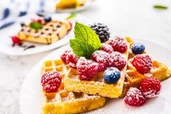Свежие waffles с ягодами засахаривают листья порошка и мяты Стоковое фото RF