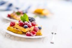 Свежие waffles с ягодами засахаривают листья порошка и мяты Стоковая Фотография