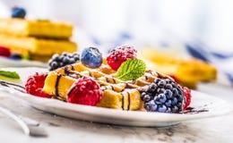 Свежие waffles с ягодами сиропа шоколада засахаривают минуту муравья порошка Стоковое Фото
