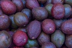 Свежий авокадо в куче на рынке фермеров стоковое фото