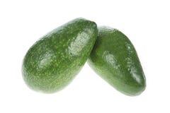Свежий авокадо Стоковые Изображения RF