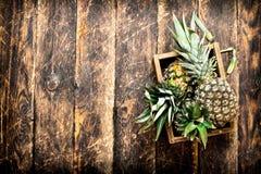 Свежий ананас в старой коробке Стоковые Изображения