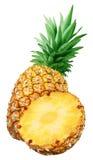 Свежий ананас и изолированная половина Стоковое Изображение RF