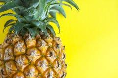 Свежий ананас на предпосылке стоковое изображение