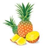 Свежий ананас с иллюстрацией вектора кусков Стоковое Изображение RF