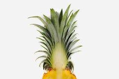 Свежий ананас Флориды изолированный на белой предпосылке Стоковые Фотографии RF