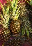 свежий ананас Стоковая Фотография