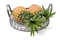 Свежий ананас 2 Стоковая Фотография RF