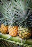 свежий ананас Стоковые Фотографии RF