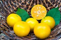 свежий апельсин на корзине Стоковая Фотография RF
