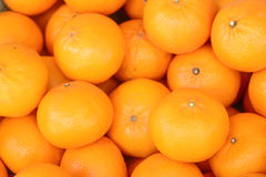 Свежий апельсин от фермы Стоковое Изображение RF