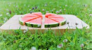 свежий арбуз Стоковое Изображение