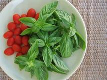 Свежий базилик и мини томаты сливы в винтажной плите на столешнице ротанга Стоковые Изображения