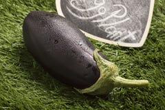 Свежий баклажан на траве с черным знаком Стоковые Изображения