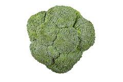 Свежий брокколи капусты Стоковые Изображения RF
