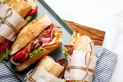 Свежий введенный в моду сандвич bahn-mi багета Стоковая Фотография RF