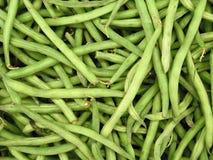 Свежий вид зеленой фасоли Стоковое Фото