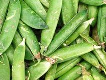 Свежий вид зеленой фасоли Стоковая Фотография