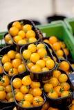 Свежий вкусный желтый крупный план макроса томатов вишни на рынке Стоковая Фотография RF