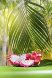 Свежий, вкусный тропик, экзотический плодоовощ дракона pitahya дракона около приятеля Стоковые Фото