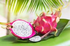 Свежий, вкусный тропик, экзотический плодоовощ дракона pitahya дракона около приятеля Стоковые Изображения RF