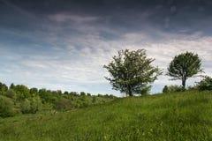Свежий воздух Стоковые Фотографии RF